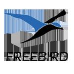 FREEBIRD - Future Sounds Radio